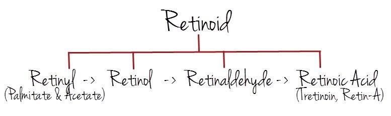 retinoids 1