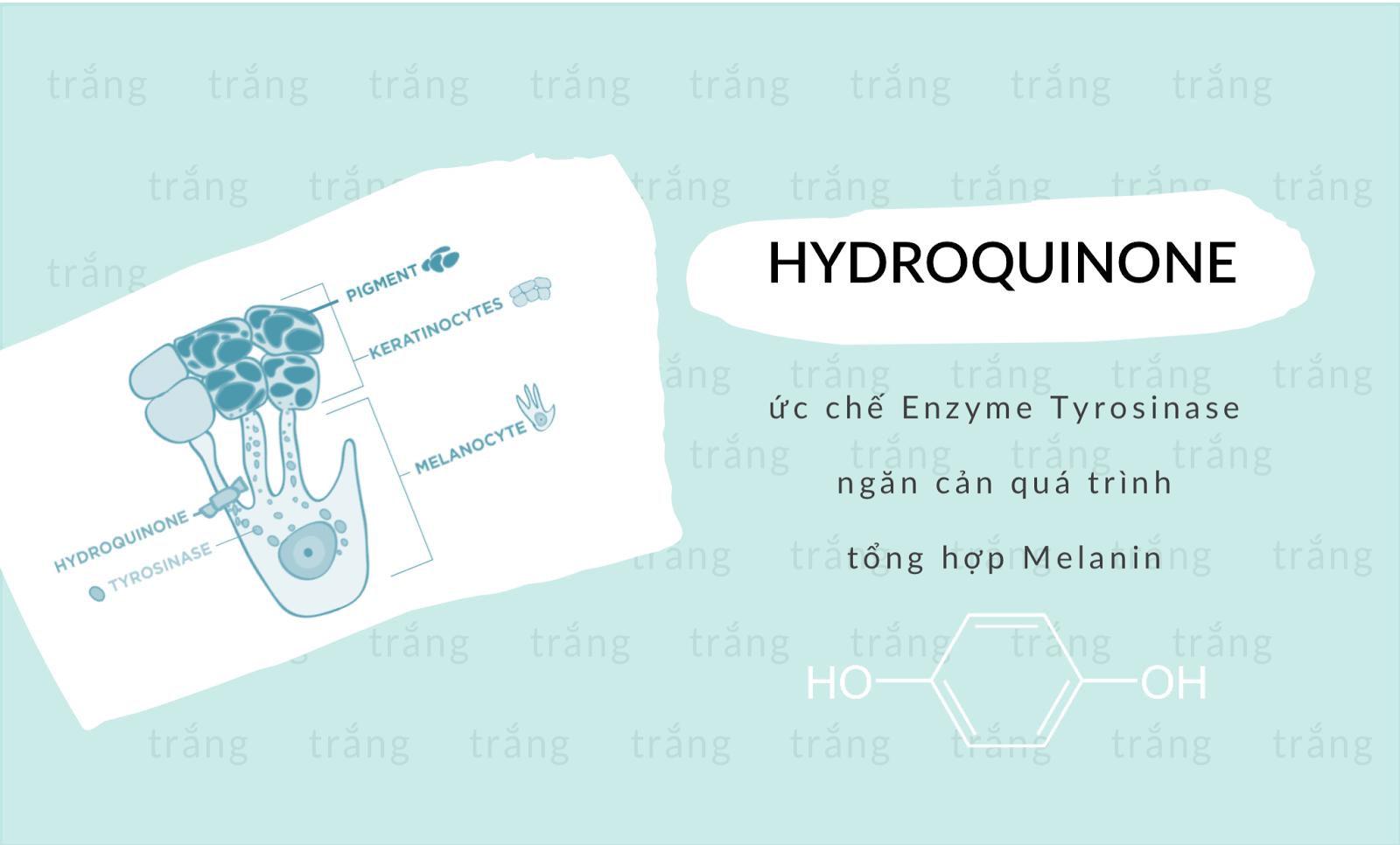 hydroquinone làm trắng da